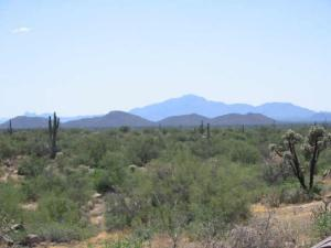 MLS 4231422 0 SE Dutchess -- Lot W, Florence, AZ 85232 Florence AZ
