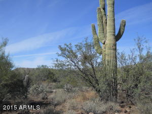 MLS 5347900 800 W Wolftrap Road Lot -, New River, AZ 85087 New River AZ